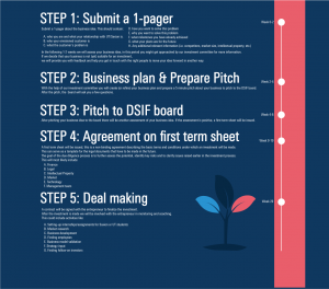 Investment Process DSIF Explained