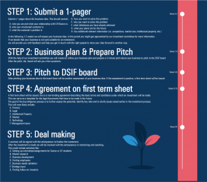 DSIF Invetment Process Explained